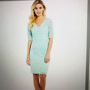 NEW Antonio Melani Lace Dress